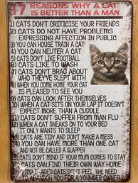 Kyltti 17 reasons why a cat is better than a man